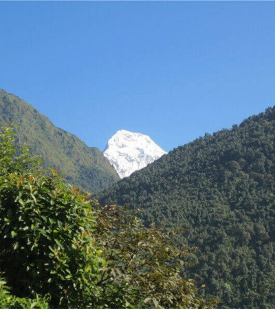 Mt Annapurna south view from Ulleri Village